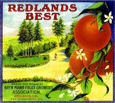 Redlands Best Orange Citrus Fruit Crate Box Label Art Print. $9.99, via Etsy.