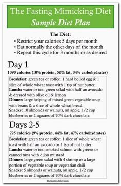 Diet plan diagram
