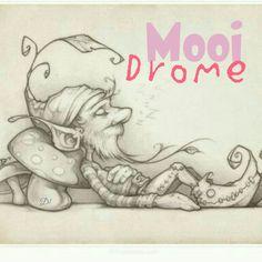 Mooi Drome