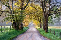 Cades Cove Great Smoky Mountains National Park - Sparks Lane Art Print