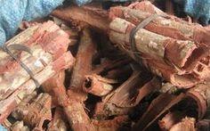 Encontrada no Brasil, a árvore chamada de angico é rica em propriedades medicinais. Confira os benefícios do chá de suas cascas para saúde.