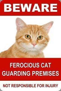 Beware Ferocious Cat Reflective Parking Sign 18x12 | eBay