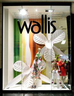 Wallis window display.