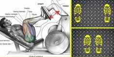 pie para prensa de pierna: En este artículo analizaremos la colocación de los pies para la prensa de piernas, y su objetivo y beneficios musculares.La sentadilla con barra es considerada el mejor de todos los ejercicios de pierna, pero la prensa de piernas definitivamente es la siguiente para la fuerza...