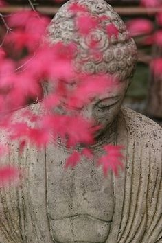 Buddha and Japanese Maple