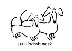 """Without the """"got dachshunds?"""" part to represent Obi and Fudge."""