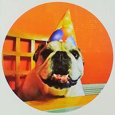 Track Your Order - ShindigZ Doggie Bag, Birthday Parties, Party, Track, Anniversary Parties, Birthday Celebrations, Runway, Parties, Truck