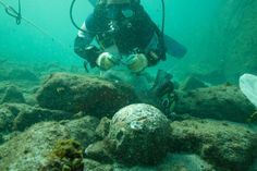 A ship which was a part of the legendary Vasco da Gama's Portuguese fleet that reached India has been found close to Al Hallaniyah island, near the coast of Oman. According to the Ministry of He Costa, Archaeology News, World Geography, European History, Shipwreck, Underwater World, 16th Century, Abandoned Places, Places To Visit