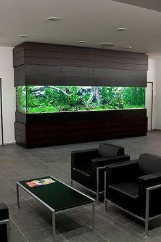 aquarium in l form