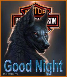 Stars At Night, Day For Night, Harley Davidson Decals, Alabama Crimson Tide Logo, Beautiful Girl Wallpaper, Badass Style, Good Night Greetings, Biker Quotes, Looney Tunes