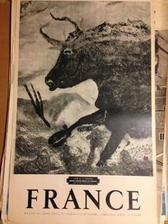 Cave Drawings, Prehistoric, Travel Posters, Fossil, Moose Art, France, Painting, Animals, Landscape