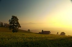 Near the Albishorn, right before sunset. Press L and try to spot the moon! Before Sunset, Switzerland, Photo And Video, Landscape, World, Places, Moon, Outdoor, Sunset