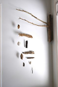 Driftwood + shells + fishing line= beautiful beach DIY wall decor!!