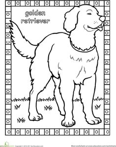 Color The Golden Retriever Different DogsFun Coloring PagesGolden