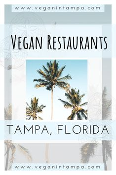 The best vegan restaurants in the Tampa Bay Area. Vegan food in Tampa, Florida. What to eat in Tampa, Florida. Vegan travel in Florida. Vegan Restaurants in Florida. Clearwater Florida, Sarasota Florida, Old Florida, Florida Travel, Tampa Restaurants, Best Vegan Restaurants, Tampa Bay Fl, Tampa Bay Area, Florida Adventures