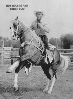 roy rogers horse trigger | ROY ROGERS TENNESSEE WALKING HORSE PALOMINO TRIGGER JR POSTCARD - New ...