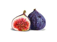 Fruchtillustration – Kendyll Hillegas - My CMS Pineapple Illustration, Fruit Illustration, Food Illustrations, Food Art Painting, Fruit Painting, Watercolor Paintings, Fig Drawing, Fig Fruit, Fruits Drawing