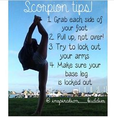 Helpful tips for your Scorpion