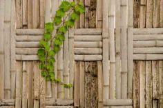 clôture de jardin en bois tressée et bambou