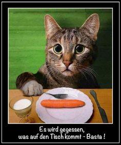 Es wird gegessen, was auf den Tisch kommt