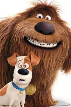 Duke (The Secret Life of Pets) Secret life of pets, Girl