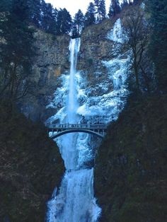 A frozen Multnomah Falls plus 4 other falls that are easy to get to when it's cold out so you can experience the magic of a frozen waterfall.