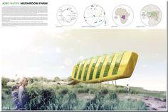 Algae powered mushroom farm