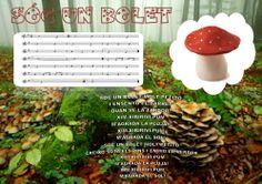 SOC UN BOLET per escoltar aquesta i més cançons ho podeu fer des de la nostra pàgina web en el menú canciones.