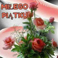 Good Morning, Plants, Polish, Photo Illustration, Buen Dia, Bonjour, Bom Dia, Planters, Plant
