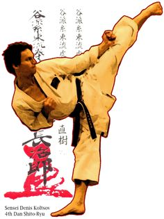 Shito Ryu, Japanese Karate