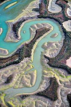 Aerial view of marshes with seaweed exposed at low tide, Bahia de Cadiz Natural Park, Cadiz, Andalusia, Spain