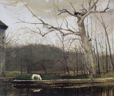 catonhottinroof: Andrew Wyeth
