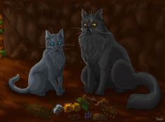 Cinderpaw and Yellowfang by Vialir on deviantART