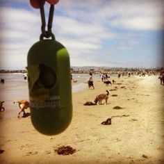 PoopBags at Ocean Beach's Dog Beach in San Diego