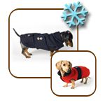 Noodle and Friends - puppy clothes made to fit your Dachschunds!