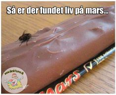 Real Evidence of Life on Mars - -The Fun Starts Here Very Funny, Wtf Funny, Funny Cute, Funny Jokes, Hilarious, Cool Pictures, Funny Pictures, Funny Mems, Life On Mars