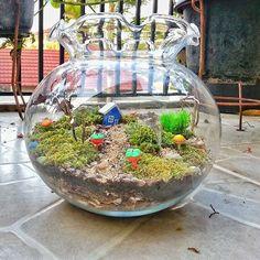 taman kecil © 2016 brilio.net