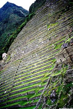 cultures en étages  - Macchu Picchu by Simon Trancart, via Flickr  images of an Amazing Machu Picchu Trip and Peru Adventures! #bestmachupicchuguides #incaruins #bucketlist