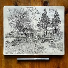 """Beautiful #sketchbook #penandink #drawing by @alexsaypast of a small copse of #trees by a #pond presumably in a #park based on the little #bench and the #gazebo. Entitled """"Springtime"""" you can see the first sign of new #leaves growing on the branches of each #tree on the right. The detail in this #illustration is exquisite. From the rendering of slightly wispy slightly puffy #clouds to the #reflections on the pond #water to the wood details on the gazebo roof and bench to the small #stones…"""