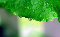 156 Best Rain Images In 2019 Rain Days I Love Rain Rain Drops
