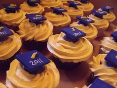 Graduation Cup Cakes - Blue and Gold