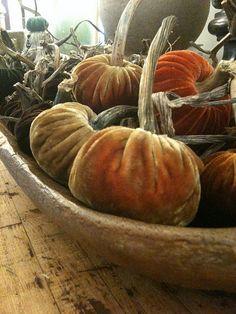 velvet pumpkins - love these!  I made 50 + last halloween!