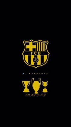 Barcelona Fc Logo, Barcelona Football, Messi Soccer, Messi 10, Fc Barcelona Wallpapers, Spain Football, Leonel Messi, Soccer Kits, Image Fun
