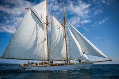 La 3èmé édition de la Panerai Transat Classique a commencé mercredi 7 janvier dernier, réunissant 10 concurrents, au départ de Lanzarote, aux Canaries, prêt à réaliser 2 800 milles pour arriver à Fort-de-France, en Martinique.