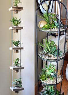 ایده های جالبی برای چیدمان گل و گیاه آپارتمانی | بانو سرا