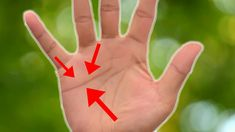 Read Your Own Palm To Predict Your Love Life. palmreading & soul