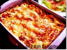 Recette lasagnes bolognaise la vraie ;  Salam allaicom, bonjour une recette traditionnelle la vraie des lasagnes à la sauce bolognaise , un plat de pâtes qui nous vient de l'Italie et notamment de Bologne que j'ai plaisir de vous la transmettre aujourd'hui.Des pâtes fondantes à souhait, une sauce à la tomate et à la …