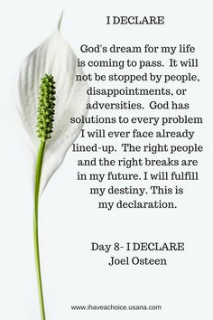 Day 8 I Declare by Joel Osteen. Gods dream in my life is coming to pass. It will not be stopped by people, disappointments or adversities.