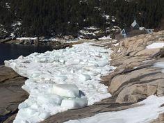 La berge glacée de l'Anse à la cale sèche.