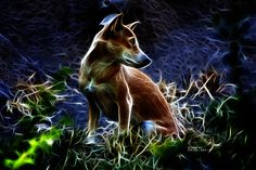 #Dog #DogArt #Dogunday #Doglovers #FractalAnimals #FractalArt    Beautiful fractal wild dog by artist James Ahn. Beautiful dog in lightning style art.     © Rateitart.com // All Rights Reserved.   All Artwork, Photography, and Designs are copyrighted.   Do not use my works for commercial purposes.   Do not use my works to create derivative works.     Thank You.